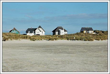 fisse på stranden Fanø